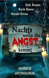 Nachts wenn die Angst kommt - Kurzgeschichten-Anthologie
