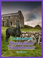 Sturm über Ravensmoor
