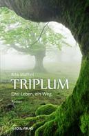 Rita Maffini: Triplum ★★