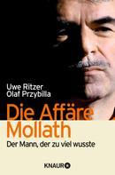 Uwe Ritzer: Die Affäre Mollath ★★★★