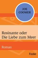 Joe Coomer: Rosinante oder Die Liebe zum Meer