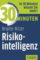 Birgitte Witzer: 30 Minuten Risikointelligenz ★