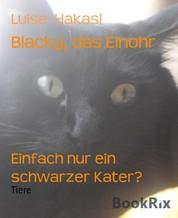 Blacky, das Einohr - Einfach nur ein schwarzer Kater?