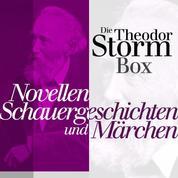 Novellen, Schauergeschichten und Märchen - Die Theodor Storm Box