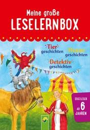 Meine große Leselernbox: Tiergeschichten, Hexengeschichten, Detektivgeschichten - Mit 3 Lesestufen