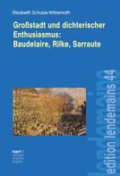 Elisabeth Schulze-Witzenrath: Großstadt und dichterischer Enthusiasmus Baudelaire, Rilke, Sarraute