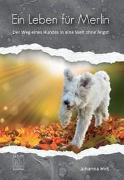 Ein Leben für Merlin - Der Weg eines Hundes in eine Welt ohne Angst