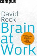 David Rock: Brain at Work ★★★★