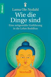 Wie die Dinge sind - Eine zeitgemäße Einführung in die Lehre Buddhas