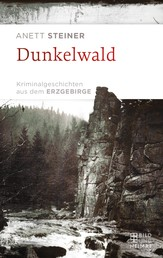 Dunkelwald - Kriminalgeschichten aus dem Erzgebirge