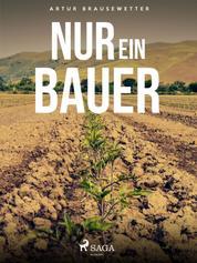 Nur ein Bauer