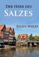 Julius Wolff: Der Herr des Salzes