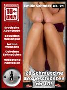 Emilie Schmidt: Erotischer Roman ab 18 ★★★