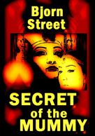 Bjorn Street: Secret of the Mummy