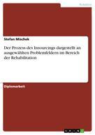 Stefan Mischek: Der Prozess des Insourcings dargestellt an ausgewählten Problemfeldern im Bereich der Rehabilitation