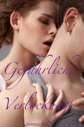 Gefährliche Verlockung - erotischer Liebesroman