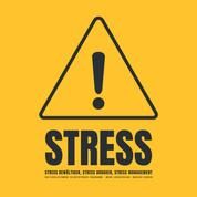 Stress! Stress bewältigen, Stress abbauen, Stress Management - Das revolutionäre Hypnose Programm: Mehr Lebensfreude, weniger Sorgen (Hypnose Download)