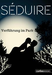 Séduire Verführung im Park - Erotischer Patchwork-Roman