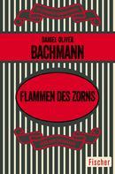 Daniel Oliver Bachmann: Flammen des Zorns