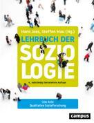 Hans Joas: Qualitative Sozialforschung