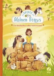 Die Schule der kleinen Ponys - Ein Heuhaufen voller Geheimnisse - Band 1