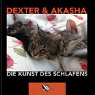 Axel Gundlach: Die Kunst des Schlafens