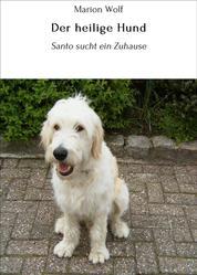 Der heilige Hund - Santo sucht ein Zuhause