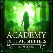 Academy of Shapeshifters - Sammelband 3 - Episode 9-12