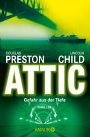 Douglas Preston: Attic ★★★★