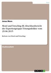 Mord und Totschlag III. Abschlussbericht der Expertengruppe Tötungsdelikte vom 29.06.2015 - Reform von Mord und Totschlag