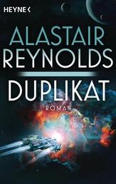 Duplikat - Roman