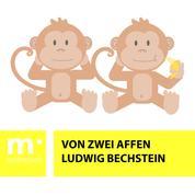 Von zwei Affen