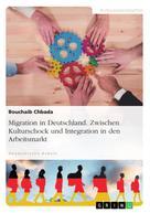 Bouchaib Chbada: Migration in Deutschland. Zwischen Kulturschock und Integration in den Arbeitsmarkt