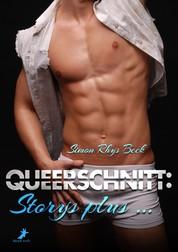 Queerschnitt: Storys plus ...
