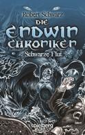Robert Schwarz: Die Endwin Chroniken ★★★★★