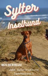 Sylter Inselhund - Jake, Sylter Inselhund