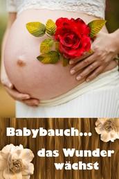Babybauch...das Wunder wächst - Alles rund um Schwangerschaft, Geburt und Babyschlaf! (Schwangerschafts-Ratgeber)