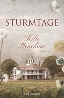 Leila Meacham: Sturmtage ★★★★