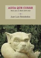 Juan Luis Seisdedos Muiño: Agua que corre