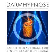 Darmhypnose: Sanfte Heilaufträge für einen gesunden Darm - Das revolutionäre Hypnose-Programm für ein gutes Bauchgefühl