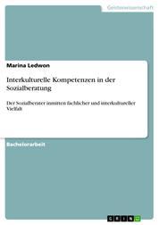 Interkulturelle Kompetenzen in der Sozialberatung - Der Sozialberater inmitten fachlicher und interkultureller Vielfalt