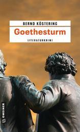 Goethesturm - Hendrik Wilmuts dritter Fall