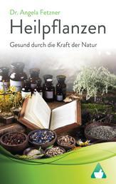 Heilpflanzen: Gesund durch die Kraft der Natur