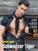 Tilman Janus: Gay Hardcore Quickie 02: Schwarzer Tiger ★★★