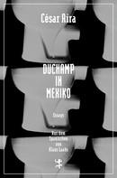 César Aira: Duchamp in Mexiko