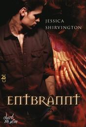 Entbrannt - Band 4
