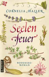 Seelenfeuer - Bodensee-Roman