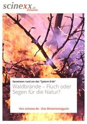 Waldbrände - Fluch oder Segen für die Natur?