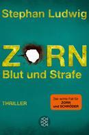 Stephan Ludwig: Zorn - Blut und Strafe ★★★★★