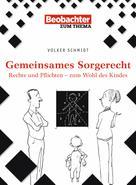 Volker Schmidt: Gemeinsames Sorgerecht